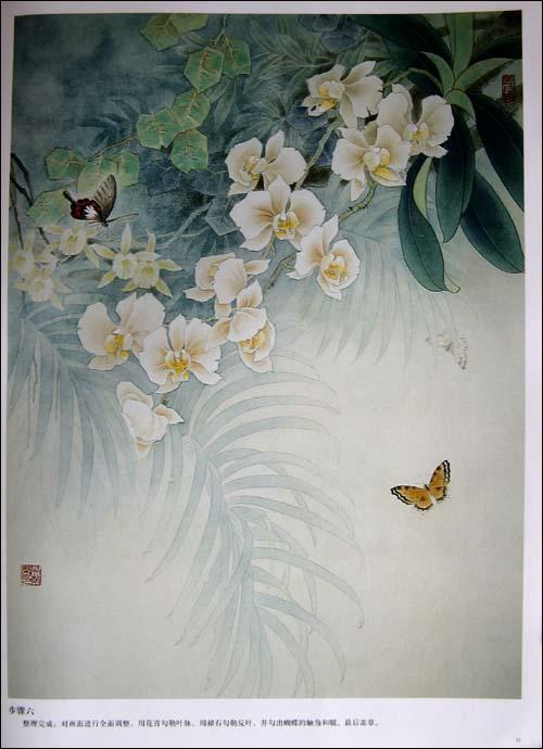 牡丹花的画法图片_牡丹花的画法铅笔画_美甲牡丹花