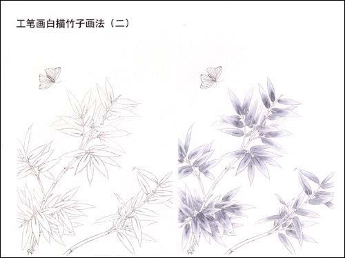 素描竹子的画法 竹子的画法简笔画