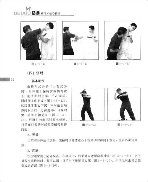 防暴格斗术核心技法