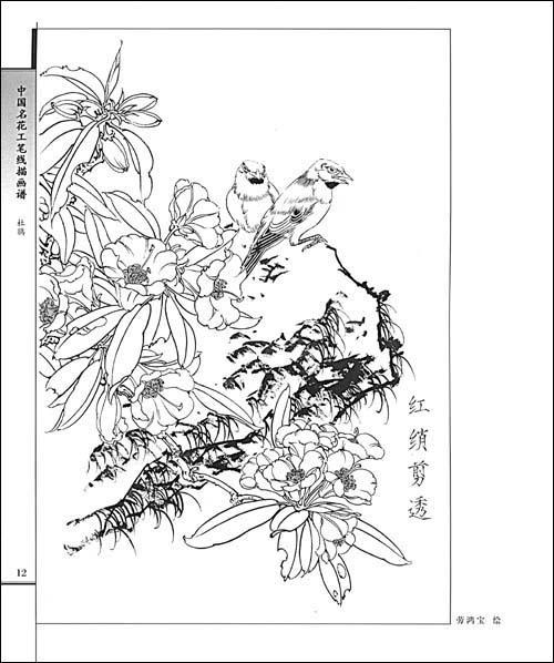 杜鹃/劳鸿宝-简介