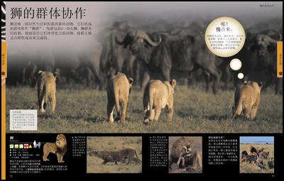儿童动物百科全书