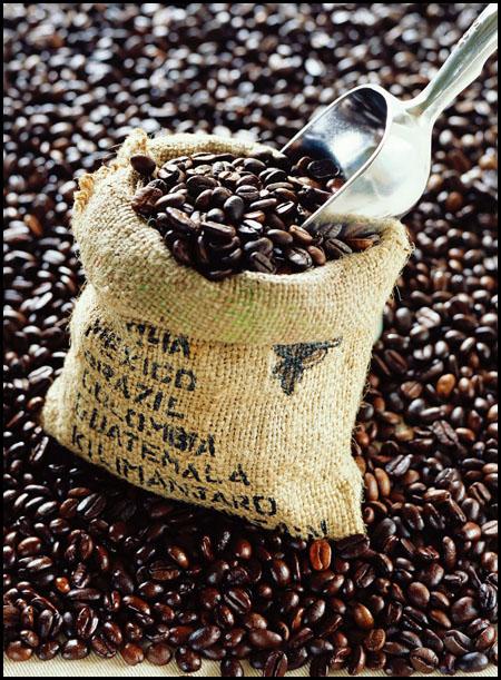 咖啡无罪的101个理由