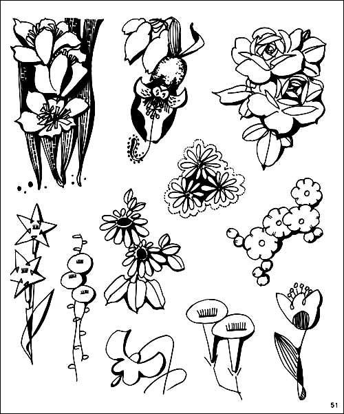 关于树叶的简笔画,各种树叶简笔画图片(5)