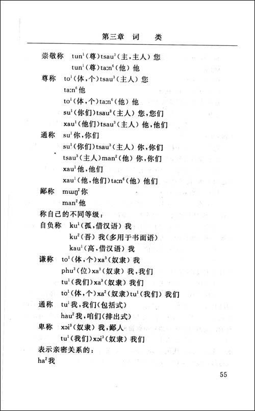 傣语方言研究(语法)/罗美珍-图书-亚马逊