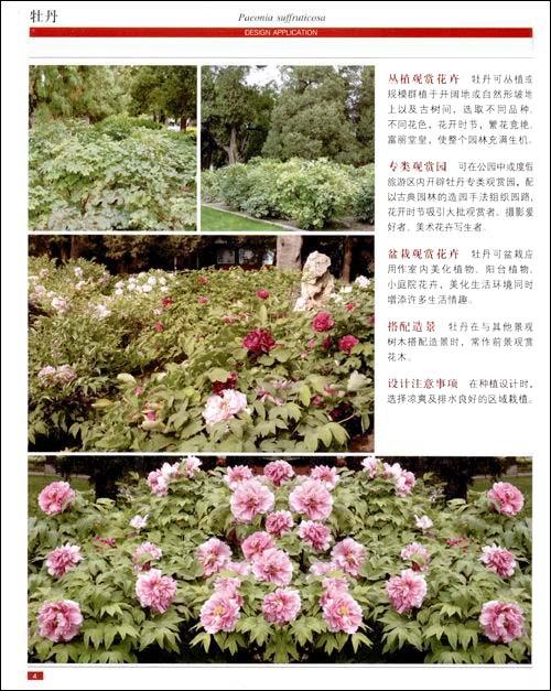 回至 图解景观植物设计:灌木篇(附cd光盘1张) (平装)