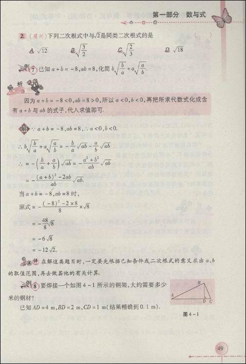 初中数学:数与式61方程(组)61不等式(组):亚马逊