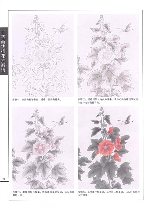 《工笔画线描花卉画谱61蜀葵篇》 安祥祥【摘要  】