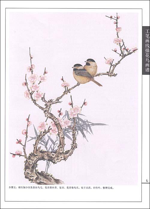 《工笔画线描花鸟画谱61山雀篇》