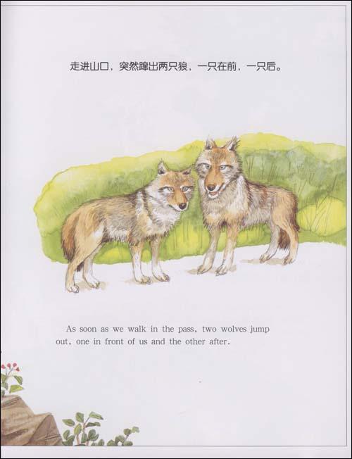 回至 动物日记:马狗袋鼠狼(中英文对照绘本) (平装)