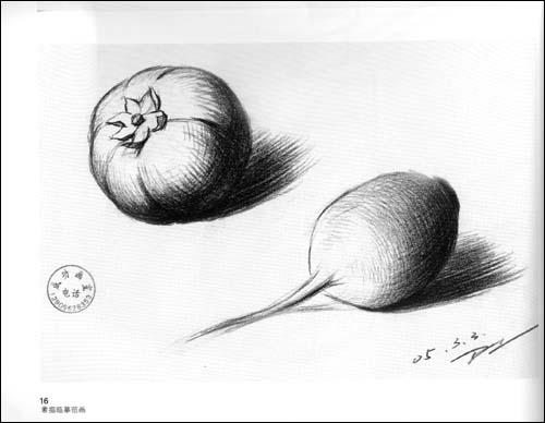 好临摹的素描静物画 简单玫瑰花静物素描 优秀静物素描作品