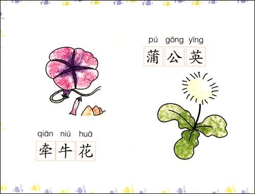 幼儿简笔画:植物风景/刘丽君
