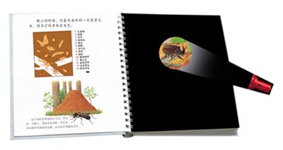 第一次发现丛书:手电筒系列•神奇的自然