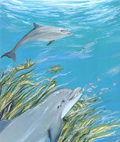 海豚:海洋里的游泳王子(适合5至10岁小朋友阅读)