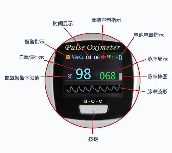 血氧饱和度数值显示;脉率数值,棒图显示;脉搏波形显示;电池电量指示