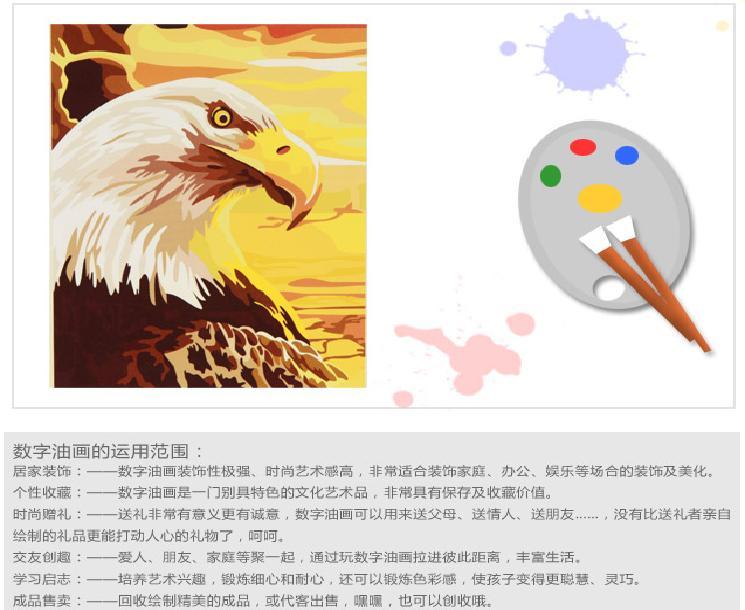 多彩多艺diy数字手绘油画 阳光下的鹰:亚马逊:家居