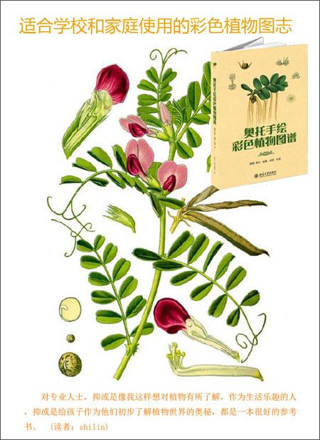 奥托手绘彩色植物图谱.pdf_科学与自然_pdf电子书免费