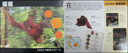 国家地理学会:雨林动物跳出来