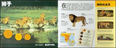 国家地理学会:非洲动物跳出来:亚马逊:图书