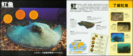 国家地理学会:海洋动物跳出来