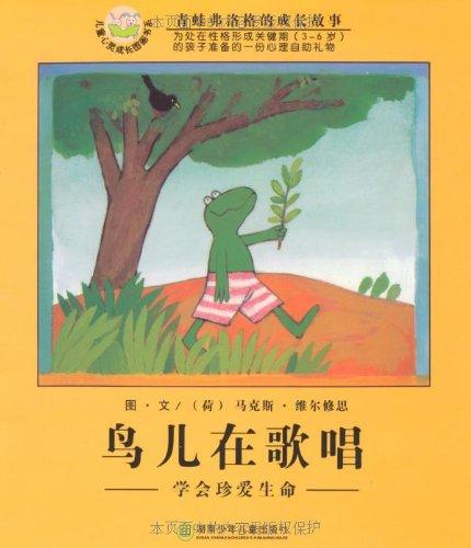 简笔画小鸟6—幼儿园